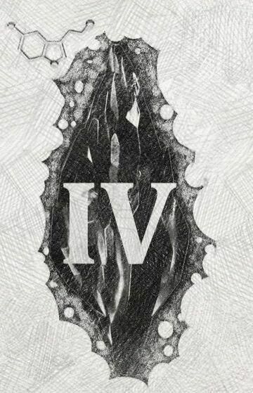 Mroczny kamień (IV)