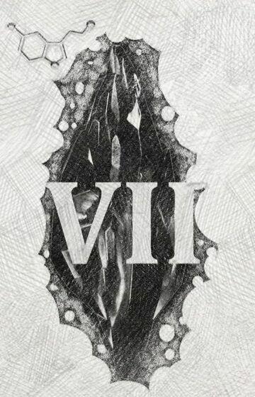 Mroczny kamień (VII)