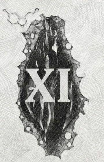 Mroczny kamień (XI)