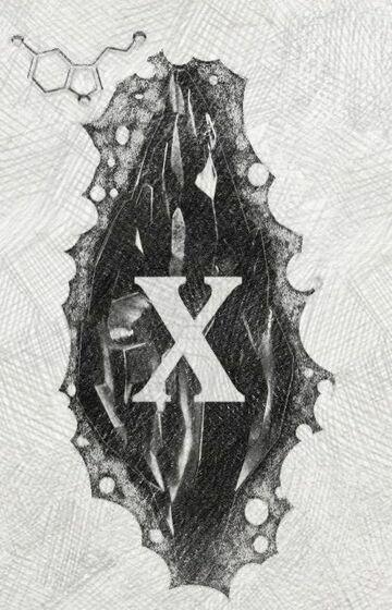 Mroczny kamień (X)