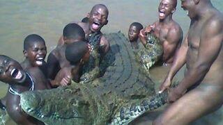 Rytuał prowadzi do tragedii: bracia giną podczas próby zgwałcenia samicy krokodyla.