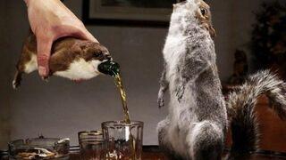 Wyprodukowano najmocniejsze piwo świata