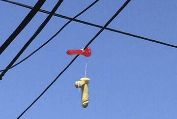 W amerykańskim Portalnd rozwieszono setki wibratorów!