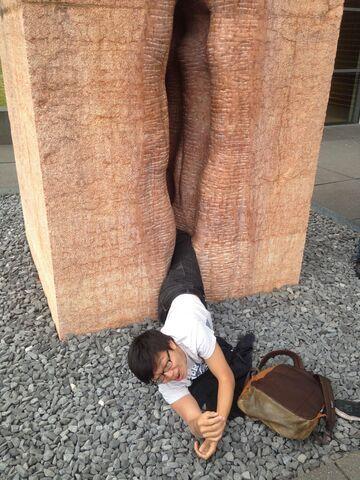 Student utknął w gigantycznej rzeźbie waginy