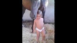 Mała dziewczynka i jej koń