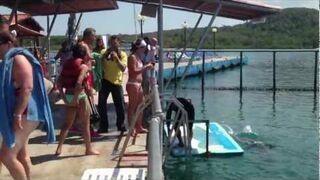Delfin pomaga dziewczynie wyjść z wody...