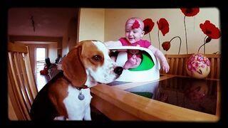 Dzieciństwo z psem jest szczęśliwsze!