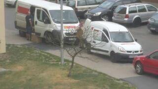 Tak pracownicy Poczty Polskiej traktująnasze przesyłki