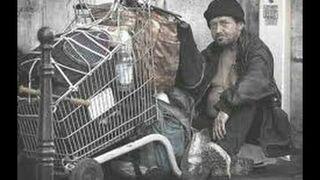 Jak ludzie reagują na bezdomnego? (eksperyment Społeczny) | [BrzozaTV]