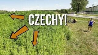 W kraju kofoli i marihuany. Najlepsze miejsca w Czechach blisko granicy
