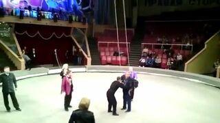 Pijany w cyrku wszedł na arene