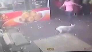 Chciał kopnąć psa. Szybka karma!