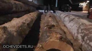 Przemyt papierosów w balach drewna