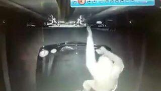 Ten kierowca TIR-a ma swój własny sposób na złodziei