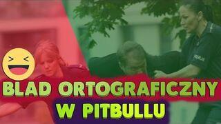 Błąd ortograficzny w Pitbullu: Niebezpieczne Kobiety