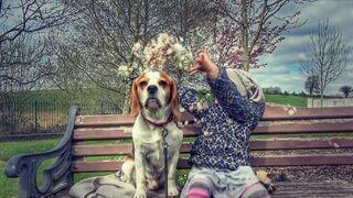 Ta dziewczynka została nauczona przez rodziców aby kochać zwierzęta