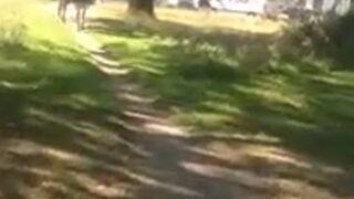 Dwie dziewczyny ukradły rower i pobiły świadka