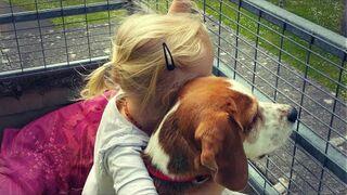 Dlaczego psy kochają dzieci.