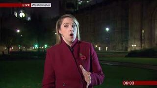 Zagłuszali transmisje na żywo w BBC odgłosami z filmu porno