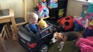 W domu, w którym mieszka pies, dziecko ma więcej okazji do śmiechu.