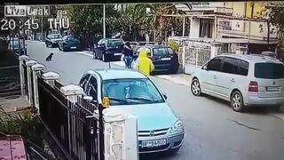 Bezpański pies ratuje kobietę przed złodziejem
