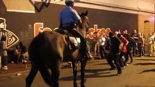 Koń w Nowym Orleanie poczuł rytm