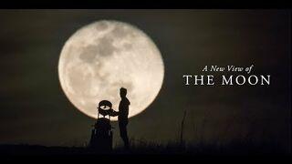Reakcje ludzi na ujrzenie księżyca przez teleskop