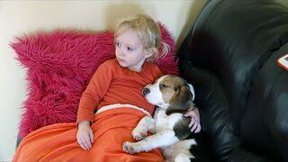 Dziecko ogląda wzruszający film ze swoimi futrzanymi przyjaciółmi