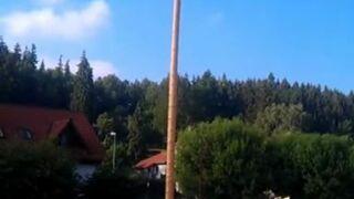 Strażacy ścinają drzewo