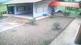 Włamywacz włamuje się do otwartego garażu