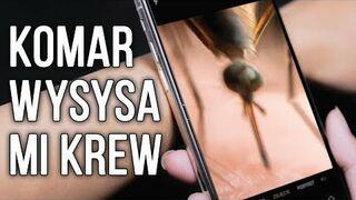 Jak zmienić smartfona w mikroskop w 5 minut?