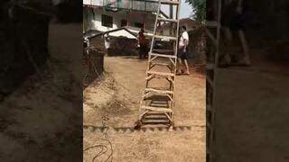 Spacerująca drabina w Indiach