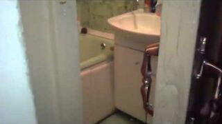 Kot w toalecie. Nie przeszkadzać!