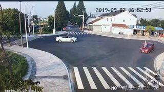 Szczeniak pokazuje jak prawidłowo przechodzić przez jezdnie