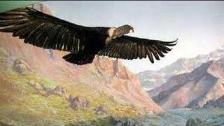 El Condor Pasa - Paul Simon & Art Garfunkel