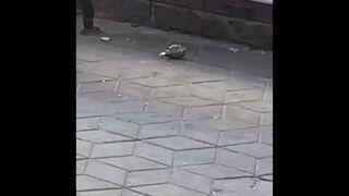 Akcja saperska w Brześciu