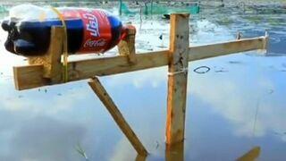 Łowienie ryb na coca-cole