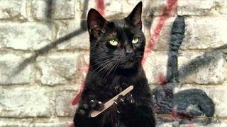 Gdyby Koty miały kciuki