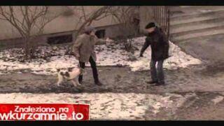Dziadek rzuca psią kupą w kobietę