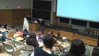 Kaczuchy na wykładzie