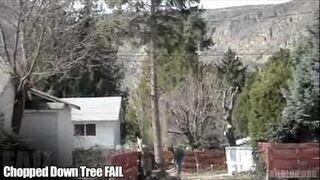 Chopped Down Tree FAIL
