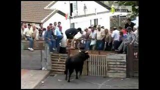 FAIL: bull vs sloppy humans Compilation