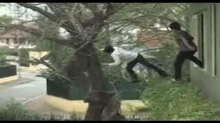 Tree Hugger FAIL