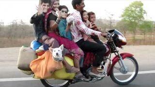 6 osób na motorze i pies
