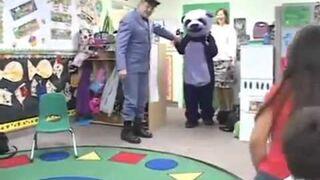 Wejście Pandy w przedszkolu