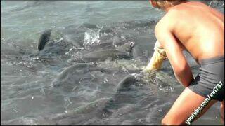 Chłopak karmi ryby na plaży