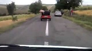 Świnia uciekła z jadącego samochodu