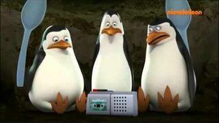 Pingwiny z Madagaskaru-przeróbka