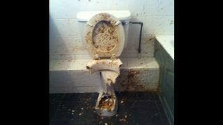 Petarda w toalecie