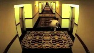 Nigdy nie rób tego w hotelu